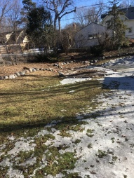 back garden ice and grassJPG.JPG