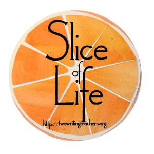 slice-of-life_individual.jpg