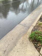 rain and the street.JPG
