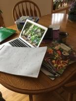 garden catalogs.JPG