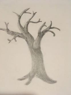 shading a tree.JPG